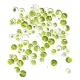 Chlorelle bio en poudre 200g