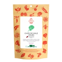 Chips de kale cacao épices 35g